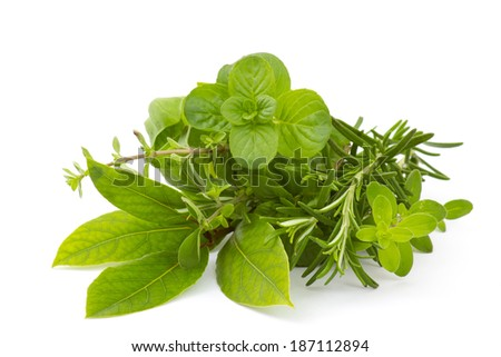 Freshly harvested herbs on white background - stock photo