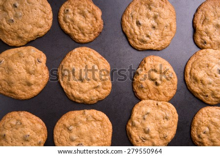 Freshly made chocolate chip cookies right from the oven still on the baking pan - stock photo