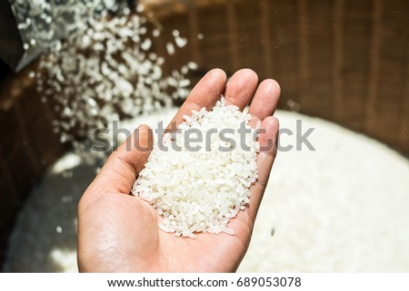 Freshly milled rice / rice