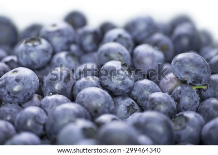 Freshly picked blueberries on white background - stock photo