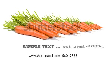 Freshly picked carrots on a pure white background with space fot ext - stock photo