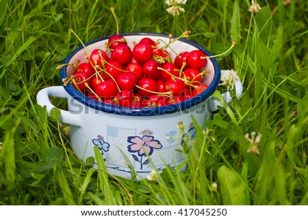 Freshly picked cherries