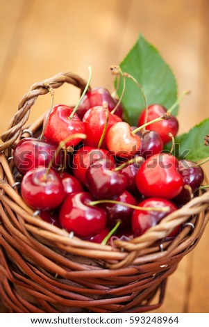 Freshly picked cherries in Cute Basket on a wooden Table