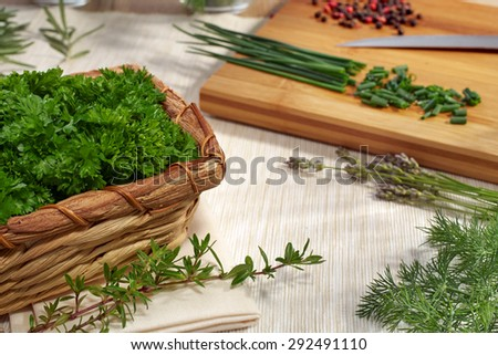 Freshly picked herbs ready are processed on a wooden cutting board