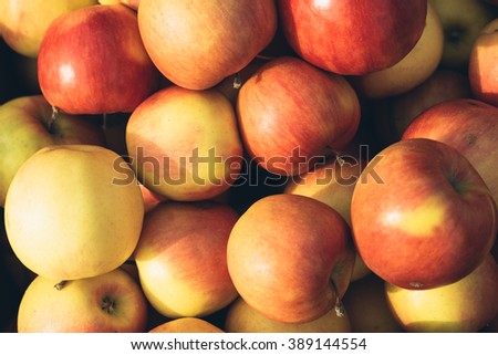 Freshly picked red and yellow apples in the sunlight close-up, top view - stock photo