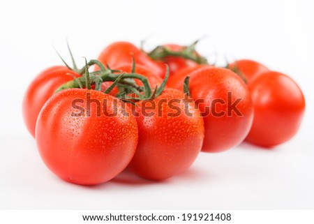 freshly picked ripe tomatoes on a branch - stock photo