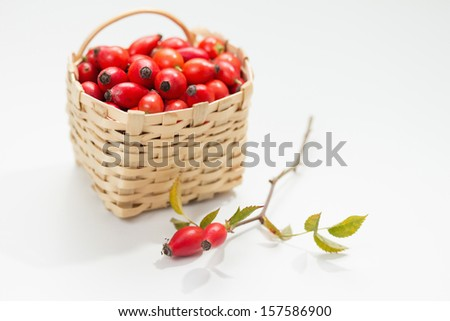 Freshly picked rose hips in small basket  - stock photo