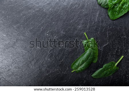 Freshly picked spinach on a background - stock photo