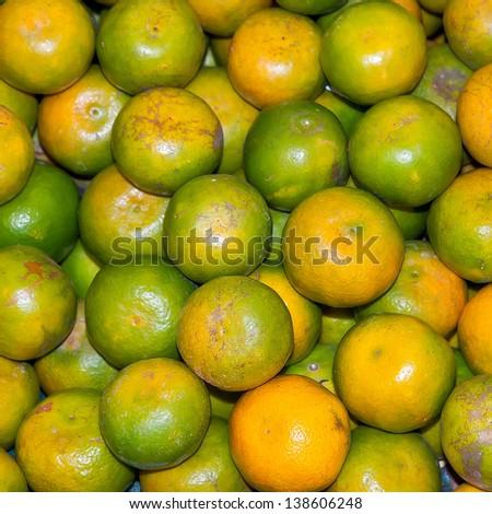 Freshly picked tangerines bulk of the tree in Valencia - stock photo