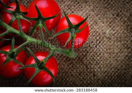 Freshly picked vine tomatoes on a rustic hessian background