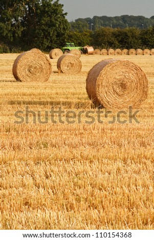 Freshly rolled golden hay bales in farmers recently harvested agricultural field - stock photo