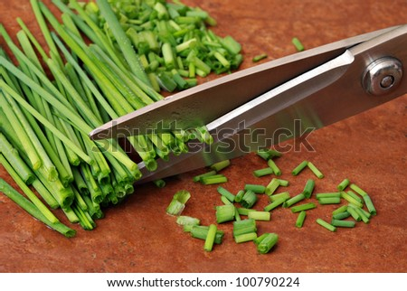 Freshly washed green chives being cut with stainless steel chef's scissors on terra cotta tile background.  Macro with shallow dof. - stock photo