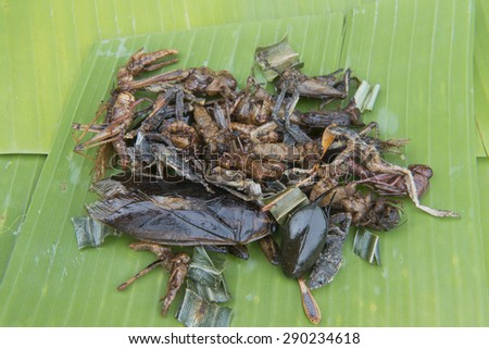 Fried edible insects mix on leaf  with green lime leaves. Fried insects are regional delicacies food in Thailand. Crispy fried insects amazing menu. - stock photo