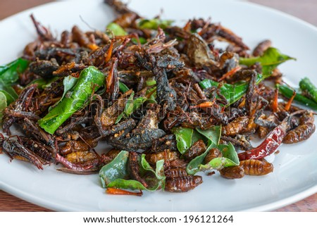 Fried edible insects mix on white plate with green lime leaves.  Fried insects are regional delicacies food in Thailand  - stock photo