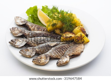 Fried fish with roasted potatoes - stock photo