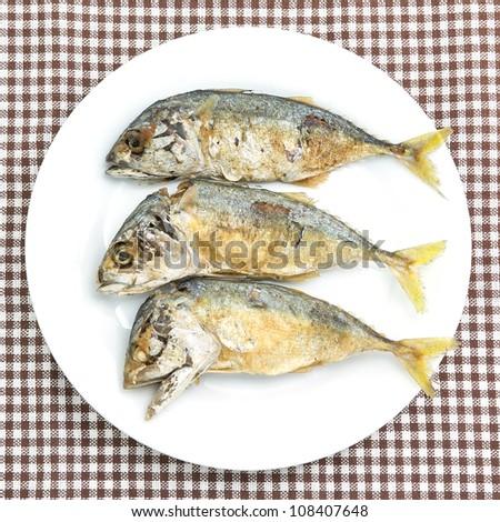 fried mackerel fishes on white plate - stock photo