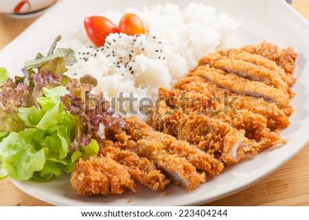 Fried pork (Tonkatsu) with rice - stock photo