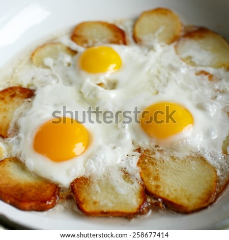 Fried potatoes with an egg on a white pan - stock photo
