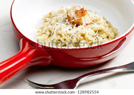 fried Saint Jacques mollusc with pearl barley risotto - stock photo