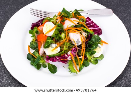 Frise Corn Salad with Chicory, Escarole, Crab Sticks and Quail Eggs Studio Photo