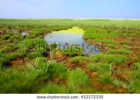 frisian water landscape - stock photo