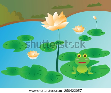 frog in the river on the leaf lotus