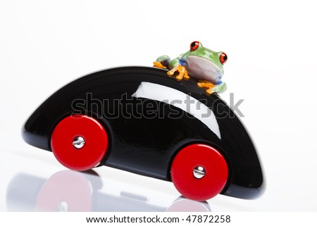 Frog on wooden toy car