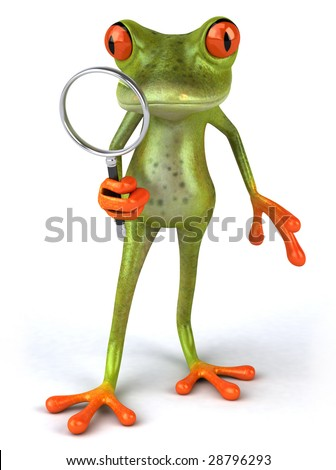 Frog searching - stock photo