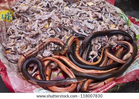 Frogs and eels on a street market in Pnom Penh, Cambodia - stock photo