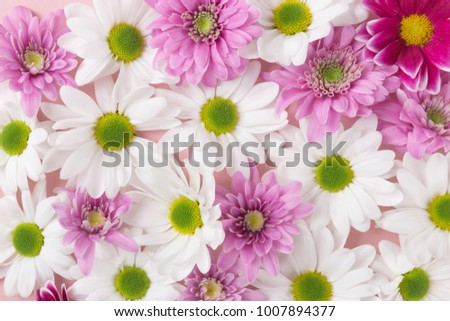 From above small soft white and pink flowers background.