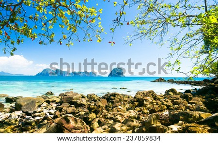 From Inside Peaceful Paradise  - stock photo