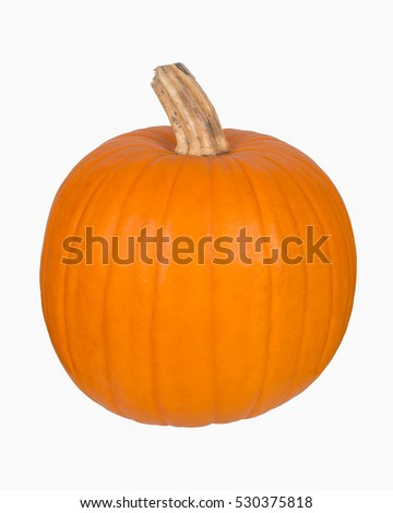 front view of a pumpkin isolated