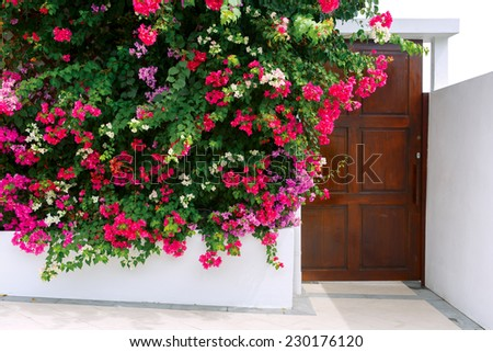 Front view of a wooden  door on a white house. Entrance of a house. - stock photo