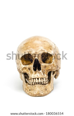 Front view of human skull isolated on white background - stock photo