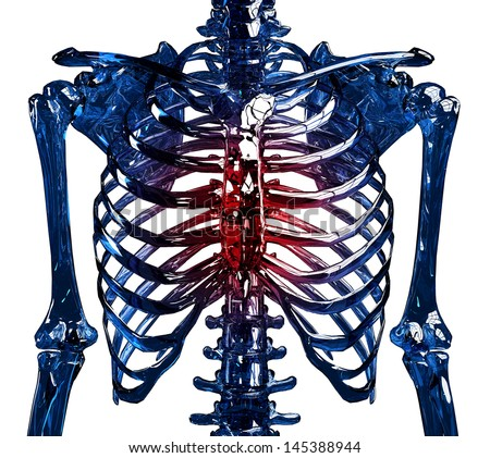 Frontal view of a human glass skeleton chest and ribs made in 3D, showing thoracic pain concept. Isolated over white background.  - stock photo