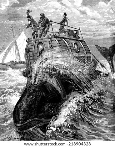 Frontispiece to travel back whale story illustrates, published by the newspaper Recreation, vintage engraved illustration. Journal des Voyages, Travel Journal, (1879-80). - stock photo