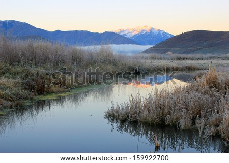 Frost beside the Provo RIver in the Wasatch Mountains, Utah, USA.