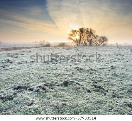 Frosted autumn meadow at dawn - stock photo