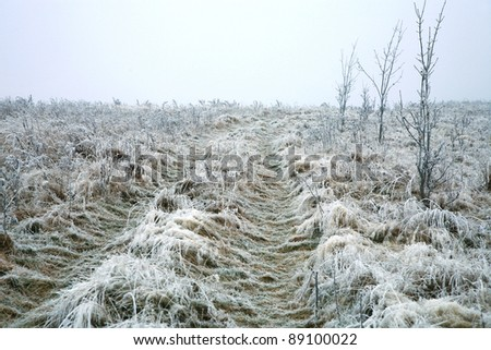 Frosted dirt road in misty haze in a gloomy winter day. Pasterka village in Poland. Beginning of winter. - stock photo