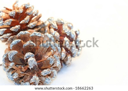 Frosted Pine Cones with White Space