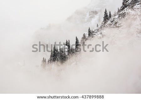Frosty morning forest and mountains - stock photo
