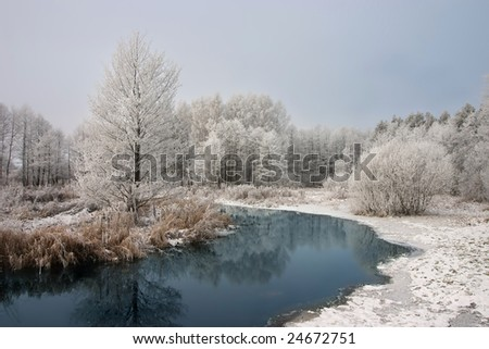 Frosty morning in national park Kemeri