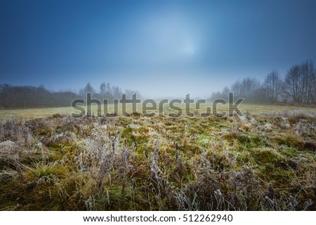 Frosty morning landscape. Early winter landscape with meadow and hoarfrost