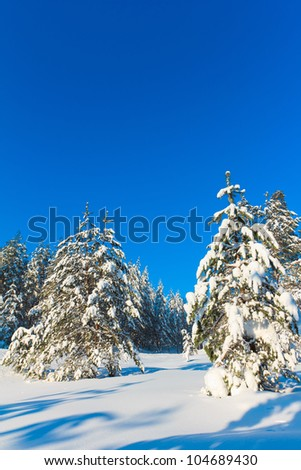 Frosty Sunny Day is in the Mountains - stock photo
