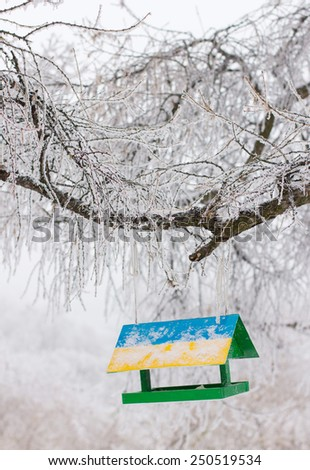 Frosty winter day, the ice crystals on the branches - stock photo