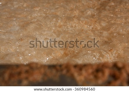Frothy beer mash into the fermentation vessel in a brewery - stock photo