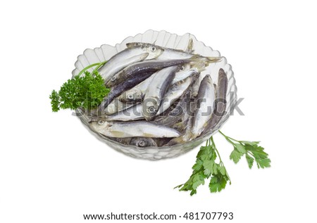 Frozen baltic herring with ice in glass bowl and sprigs of a parsley on a light background