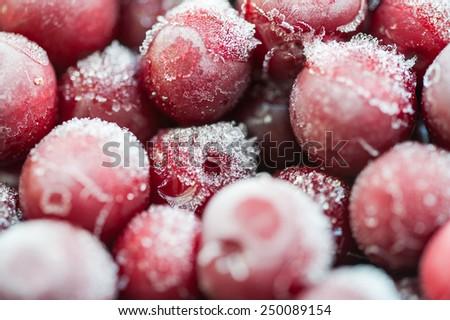 Frozen cherry berries. Macro image with small depth of sharpness - stock photo