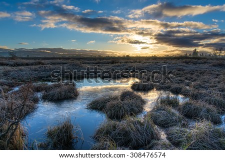 Frozen grass on a cold morning with sun rising. - stock photo