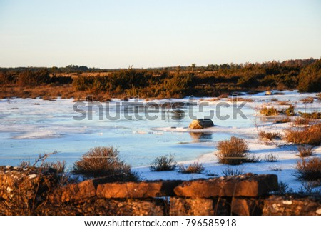 Frozen pond in a great plain landscape at the swedish island Oland